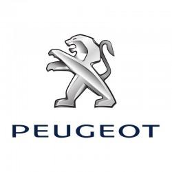PEUGEOT 1007 (2005 - 2009)