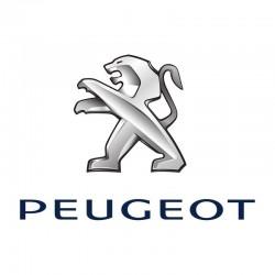 PEUGEOT 2008 (2013 - 2016)